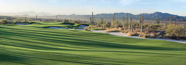 The GC at Dove Mountain - Wild Burro