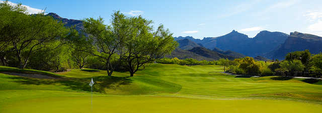 Canyon at Ventana Canyon: #7
