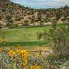 A view of a hole at Golf Club of Estrella.