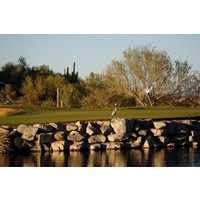 SunRidge Canyon Golf Club has a natural setting that welcomes birdlife and other wild animals.