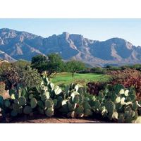 Greg Nash designed The Views Golf Club at Oro Valley, incorporating the native cacti that dot the terrain.