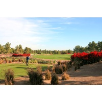 The Raven Golf Club - Phoenix has a large amount of bougainvillea that blooms a colorful red.
