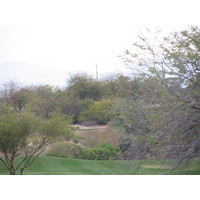 Coyote Lakes Golf Club - Phoenix Scottsdale - tree branch clears