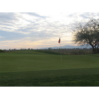 Coyote Lakes Golf Club - Phoenix Scottsdale - Hole No. 7 green