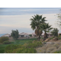Coyote Lakes Golf Club - Phoenix Scottsdale - Palm trees and houses on fairway edge