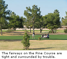 The Pine Course