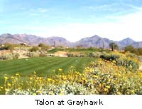 talon at grayhawk