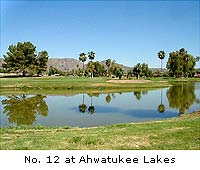 The Lakes at Ahwatukee
