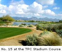 No. 15 at the TPC Stadium Course