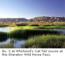 Whirlwind Cat Tail Course